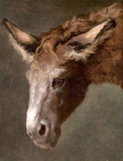A Study for the Head of a Donkey | Jacques-Laurent Agasse | Oil Painting