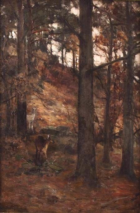 Forest Glade | David Farquharson | Oil Painting
