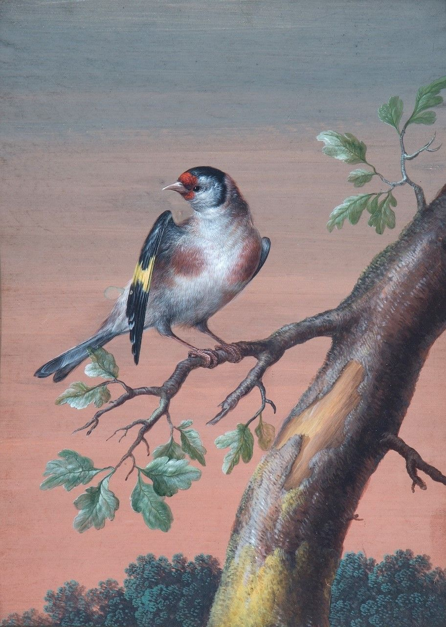 A Bird In A Tree Branch Painting Christoph Ludwig Agricola Oil Paintings