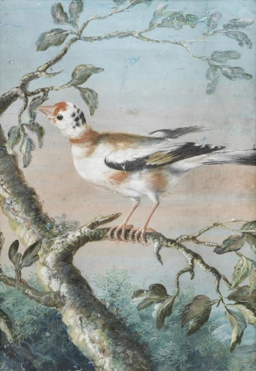 A Bird Seated on a Branch | Christoph Ludwig Agricola | Oil Painting