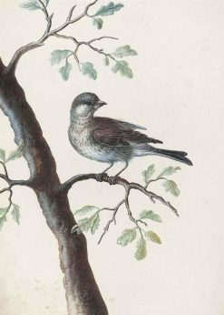 A Bird on an Oak Branch | Christoph Ludwig Agricola | Oil Painting