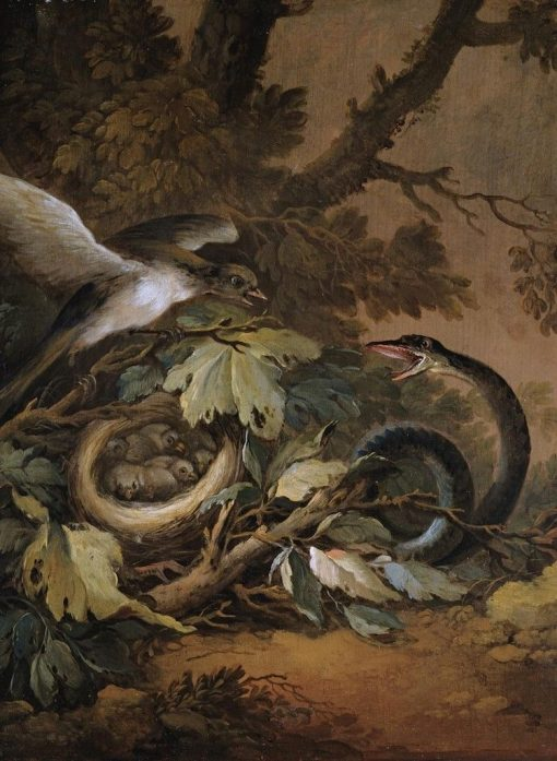A Still Life with a Viper and a Bird's Nest | Christoph Ludwig Agricola | Oil Painting