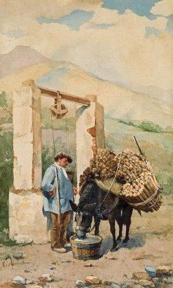 Watering a Donkey I | Hiacynt Alchimowicz | Oil Painting