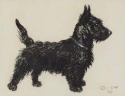 A Scottie | Cecil Charles Windsor Aldin | Oil Painting