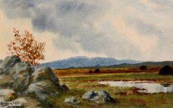 Connemara Landscape | Douglas Alexander | Oil Painting