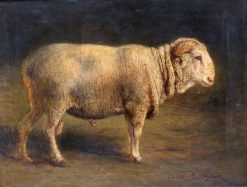 A Study of a Ram | Rosa Bonheur | Oil Painting