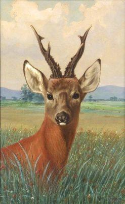 Portrait of a Deer | Rosa Bonheur | Oil Painting