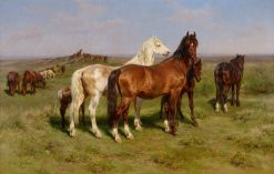 Horses in a Field | Rosa Bonheur | Oil Painting