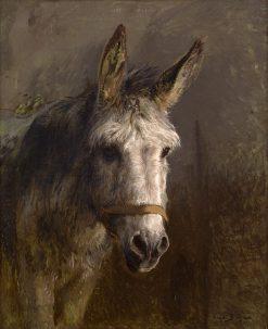 Portrait of a Donkey | Rosa Bonheur | Oil Painting