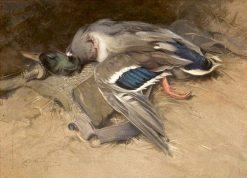 Mallard Drake | Edwin John Alexander | Oil Painting
