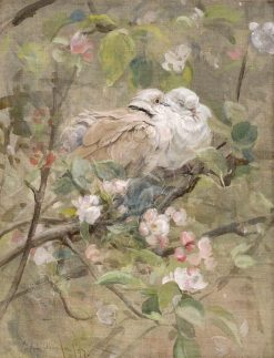 Doves and Apple Blossoms | Edwin John Alexander | Oil Painting