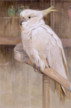The White Cockatoo | Edwin John Alexander | Oil Painting