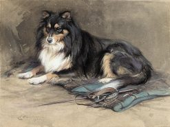 A Collie | Edwin John Alexander | Oil Painting