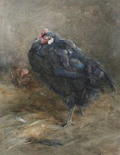 A Chicken | Edwin John Alexander | Oil Painting
