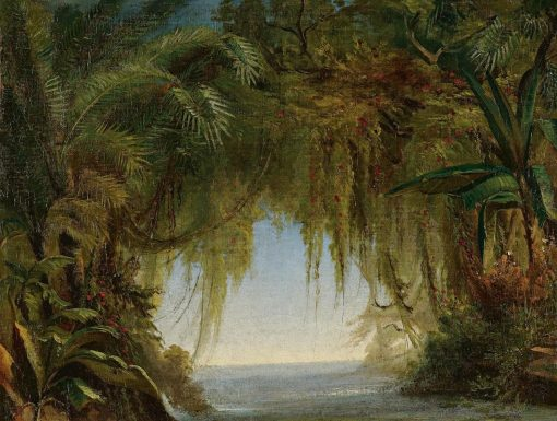 Tropical Landscape   Johann Moritz Rugendas   Oil Painting