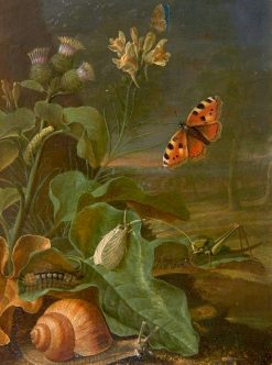 Still Life with Plants and Insects | Johann Adalbert Angermayer | Oil Painting