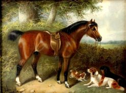 Horse and Dogs | Edward Armfield | Oil Painting