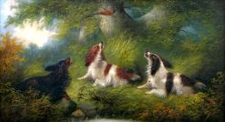 Three Spaniels Flushing out a Grouse | Edward Armfield | Oil Painting