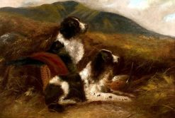 Springer Spaniels in a Moor with Game | Edward Armfield | Oil Painting