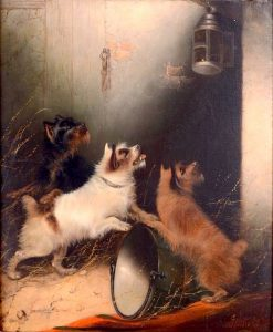 Three Terriers Watching a Mouse in a Lantern | Edward Armfield | Oil Painting