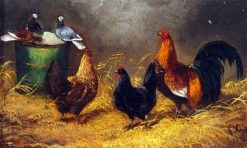 Chickens and Pigeons in a Barn Interior | Edward Armfield | Oil Painting