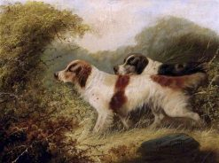 Two Setters | Edward Armfield | Oil Painting