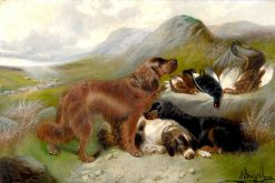 Sporting Dogs in a Highland Landscape | Edward Armfield | Oil Painting