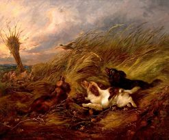 Three Spaniels Chasing a Duck | George Armfield | Oil Painting