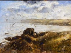 Gulls at St. Abbs   Robert Gemmell Hutchison   Oil Painting
