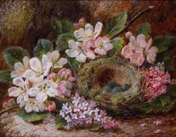 Apple Blossom and a Bird's Nest | Oliver Clare | Oil Painting