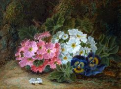 Primulas and Pansies | Oliver Clare | Oil Painting