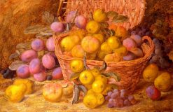 Still Life of Fruit in a Basket | Vincent Clare | Oil Painting