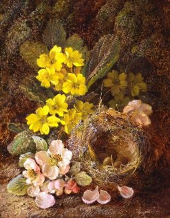 Still Life with Bird's Nest | Vincent Clare | Oil Painting