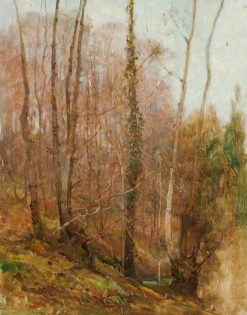 Sketch of North Devon Woodland | Benjamin Haughton | Oil Painting