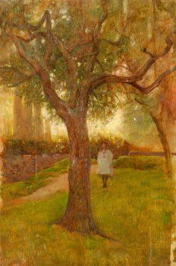 Study of an Olive Tree | Benjamin Haughton | Oil Painting