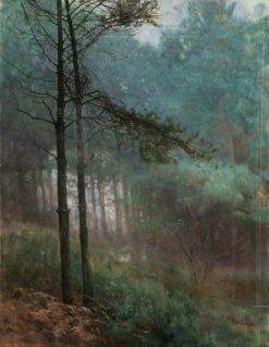 Study of Fir Wood | Benjamin Haughton | Oil Painting