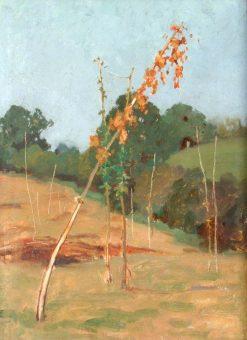Summerhill | Benjamin Haughton | Oil Painting