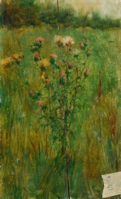 Thistle in a Field | Benjamin Haughton | Oil Painting