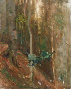 Tones for Forest Scene | Benjamin Haughton | Oil Painting