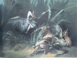 Dog Attacking a Heron | Jean-Baptiste Oudry | Oil Painting