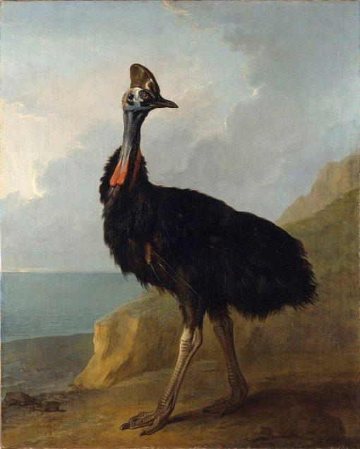 Cassowary | Jean-Baptiste Oudry | Oil Painting