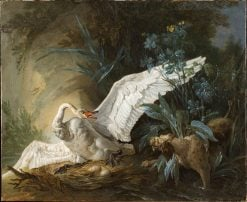 Water Spaniel Surprising a Swan on its Nest | Jean-Baptiste Oudry | Oil Painting