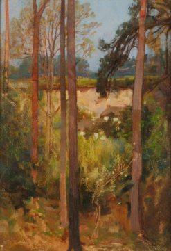 Trees in a Quarry | Benjamin Haughton | Oil Painting