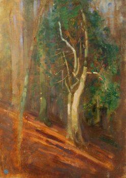 Trees in a Wood | Benjamin Haughton | Oil Painting