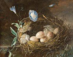 Still Life with Bird's Nest | Franz Xavier Petter | Oil Painting
