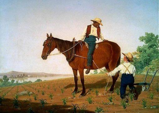 In the cornfield | James Goodwyn Clonney | Oil Painting
