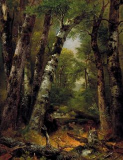 Woodland Glen | Asher Brown Durand | Oil Painting