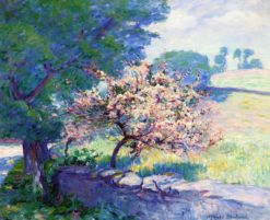 Blossom Overhanging Wall | Wynford Dewhurst | Oil Painting