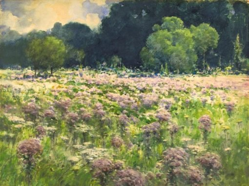 Field of Joe Pie Weeds (also known as Pride of the Meadow)   William Henry Holmes   Oil Painting
