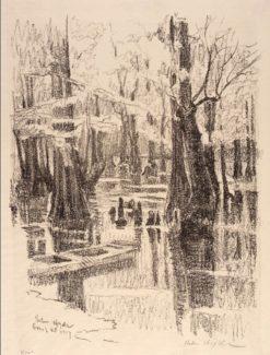 Cypress Swamp | Helen Hyde | Oil Painting